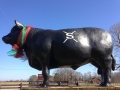 Big Bull wishes you a Merry Christmas!
