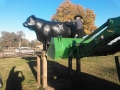 Our Senior Bull also received some TLC, getting his annual touch up before the winter!